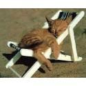 ضد استرس و آرامبخش